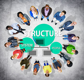 organizational-structure-teal